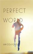 ciperfectworld-1